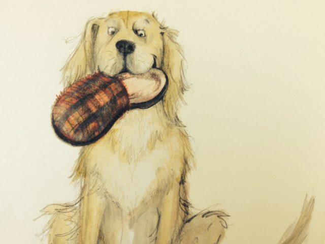 Cani da amare_10