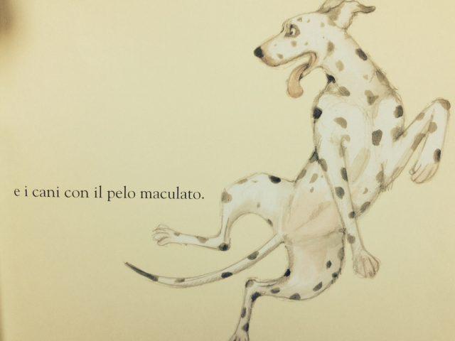 Cani da amare_6