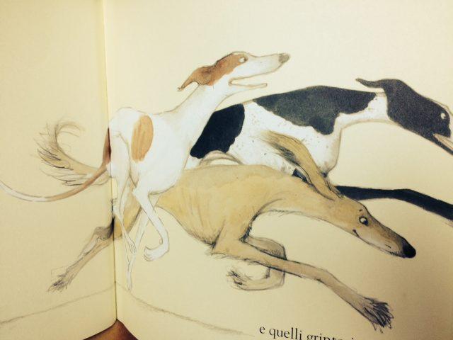 Cani da amare_8