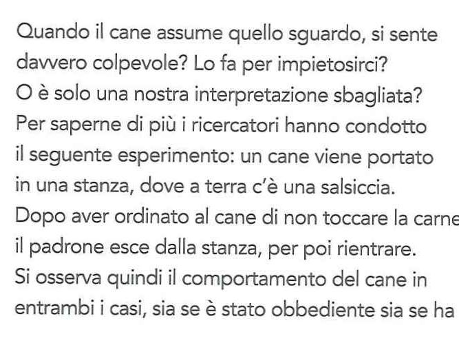 canigatti_editorialescienza11