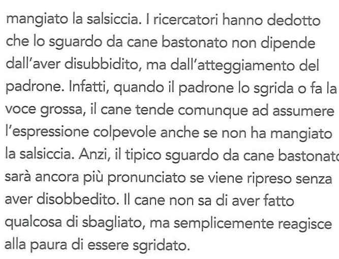 canigatti_editorialescienza12