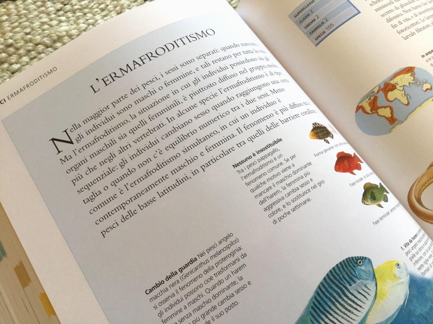 NUOVA ENCICLOPEDIA DEGLI ANIMALI - Touring Club Editore