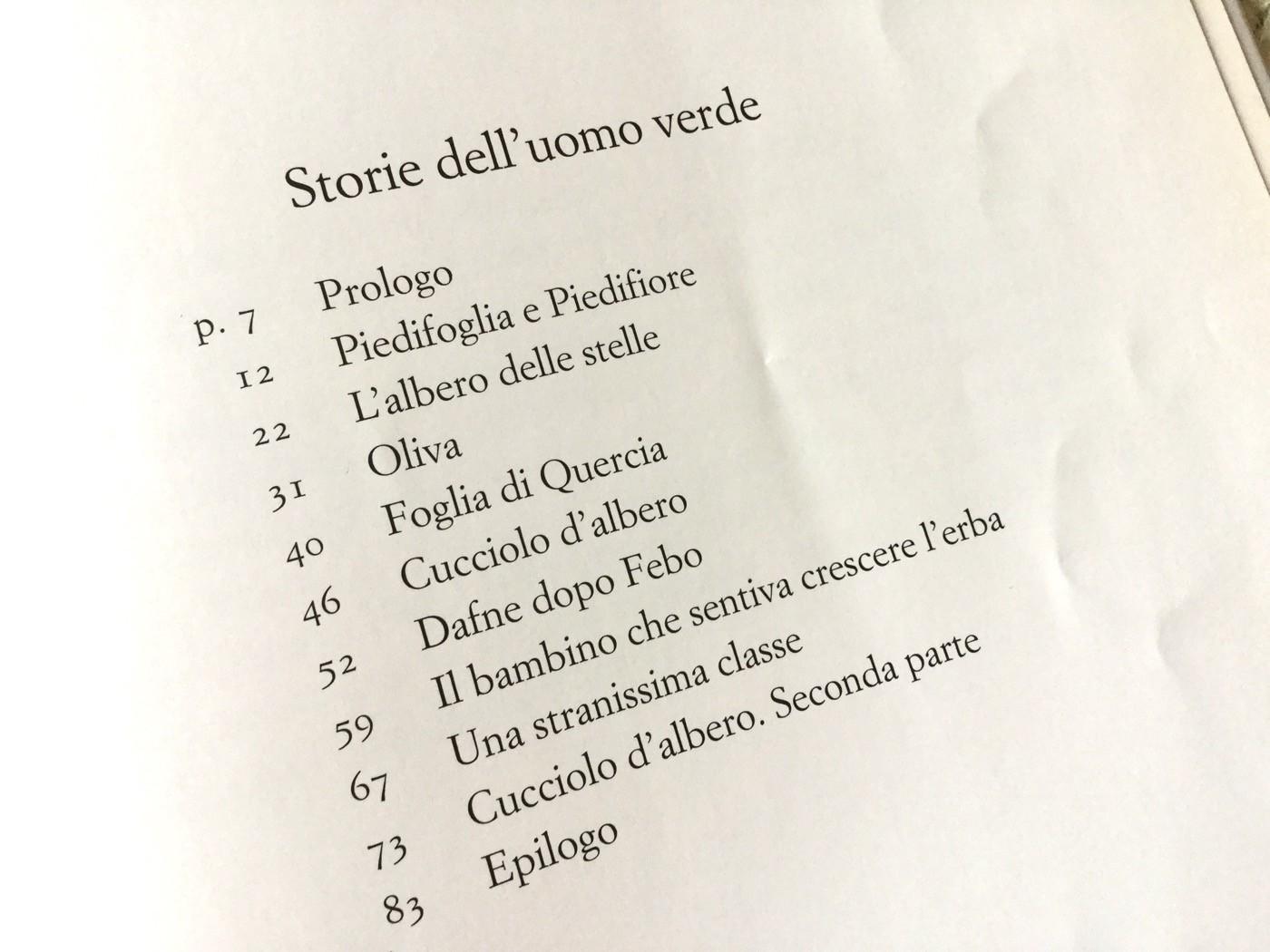 STORIE DELL'UOMO VERDE   BEATRICE MASINI - G. GAVIRAGHI - EINAUDI RAGAZZI - 2010
