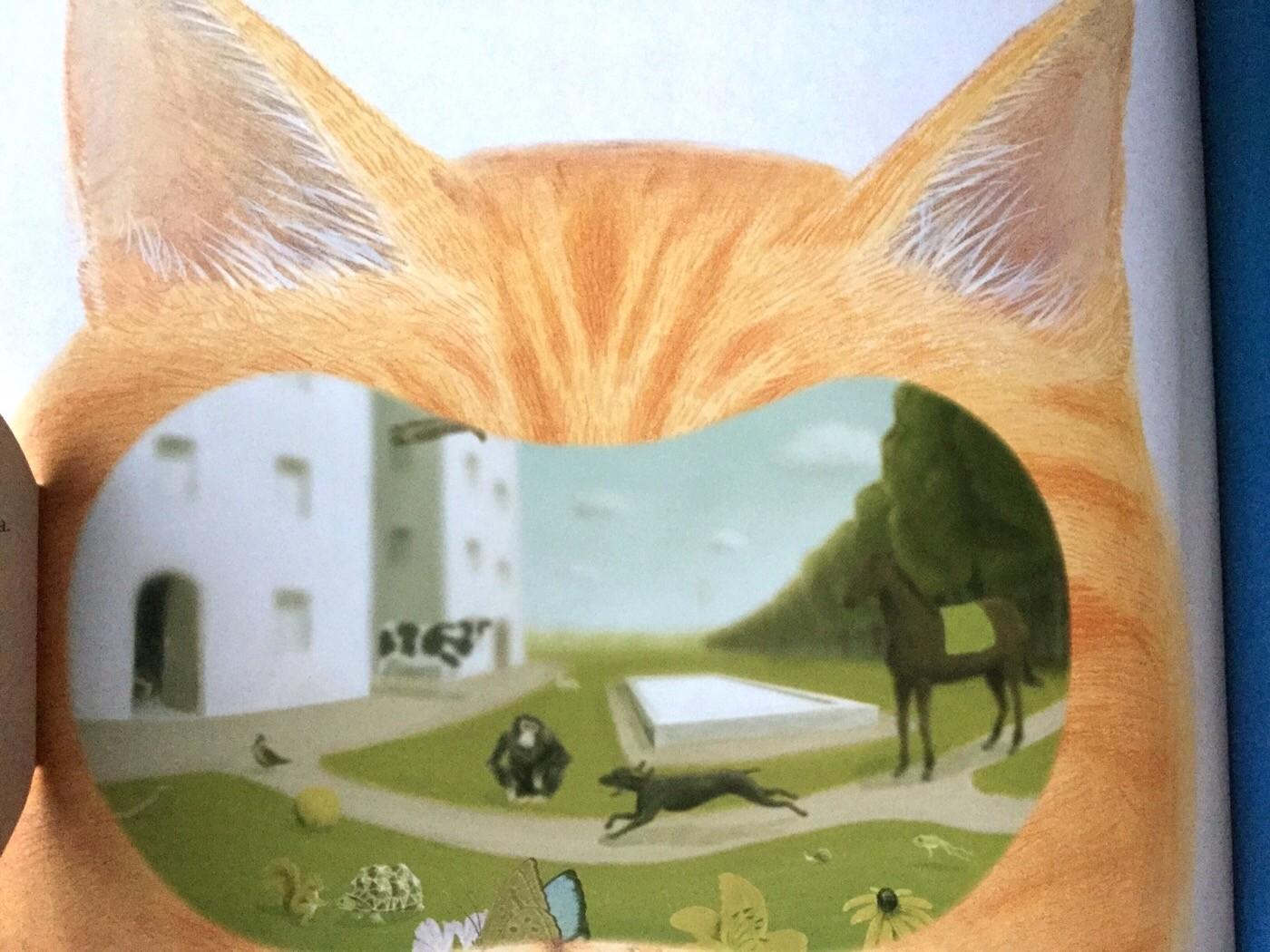 ZOOTTICA Come vedono gli animali? Guillaume Duprat - L'Ippocampo - 2013- Galline Volanti