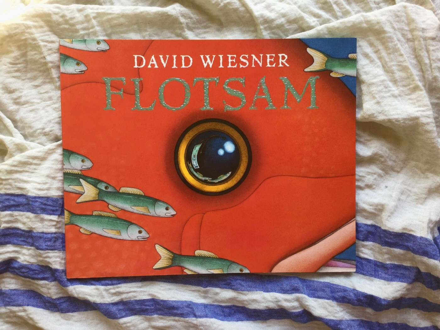Flotsam-david-wiesner-galline-volanti