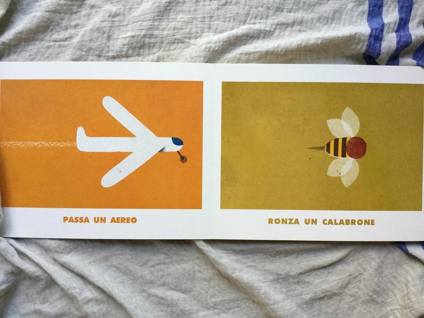 Nel-cielo-nel-mare-giovanna-zoboli-philip-giordano-topipittori-galline-volanti
