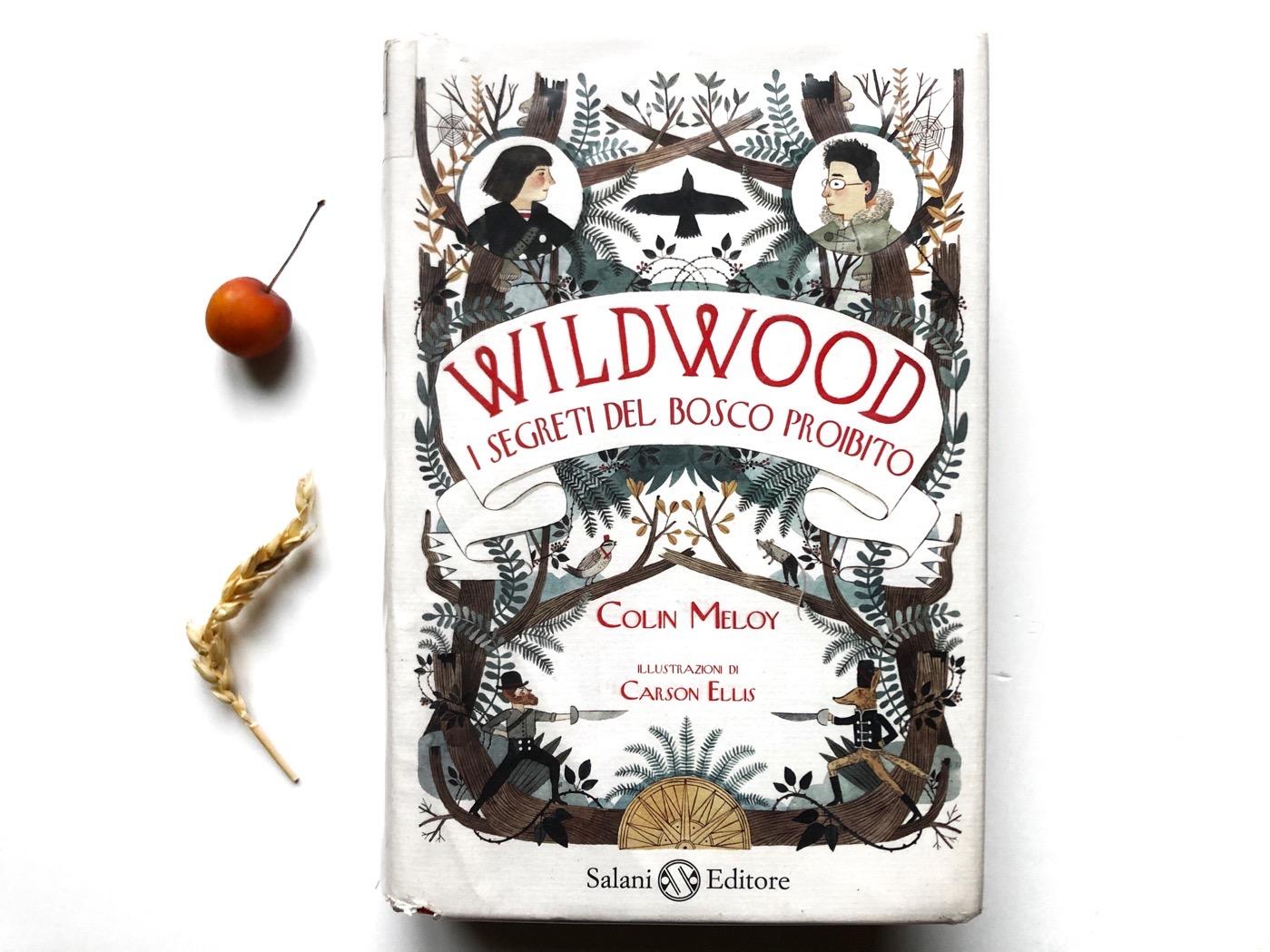 wildwood-colin-meloy-carson-ellis-salani