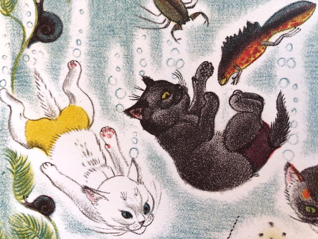 gatto-orlando-campeggio-kathleen-hale-risma-galline-volanti-6