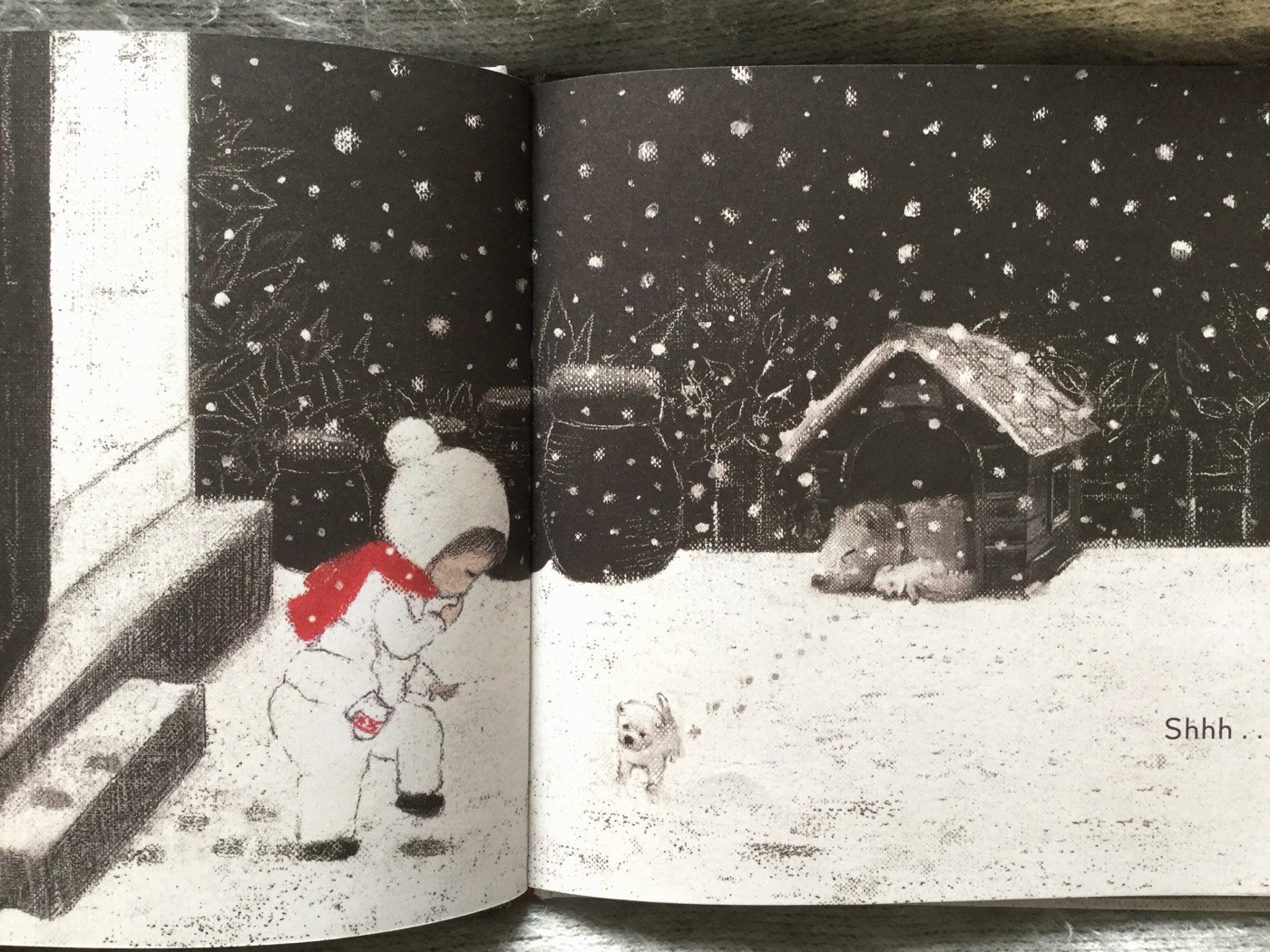 First snow - Bomi Park