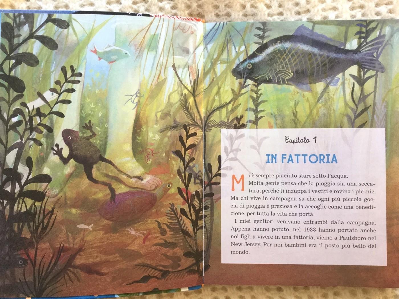 Sylvia-Earle-signora-abissi-Carminati-Mariachiara-Di-Giorgio-Editoriale-Scienza-Galline-Volanti