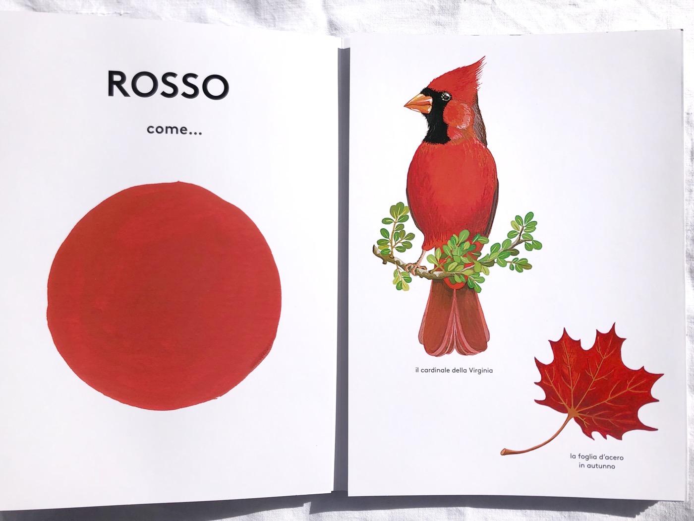 rosso-come-pascale-estellion-ippocampo-galline-volanti